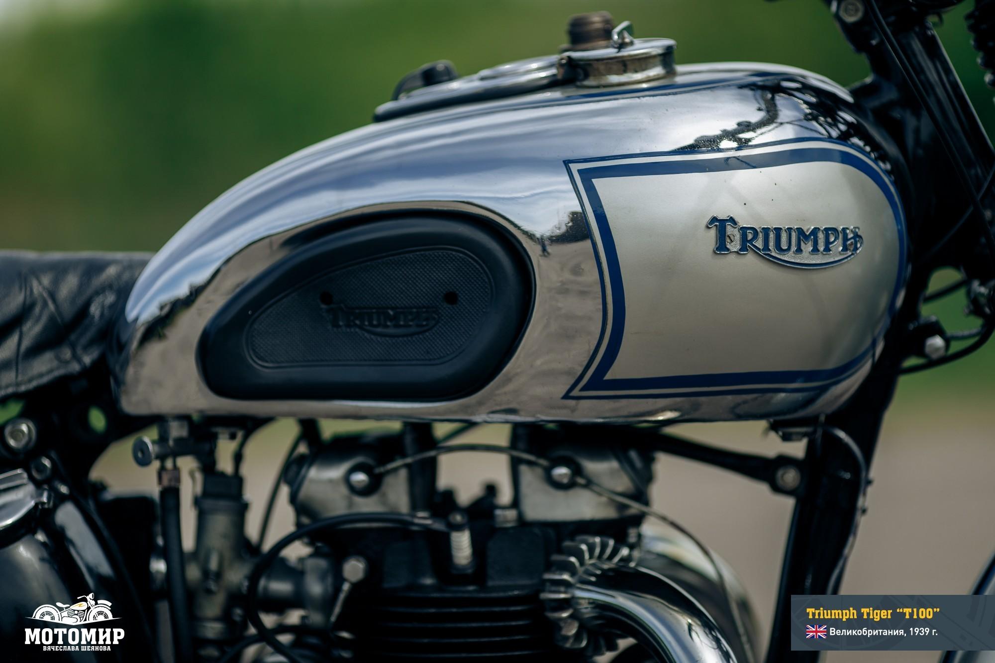 triumph-tiger-t100-web-11